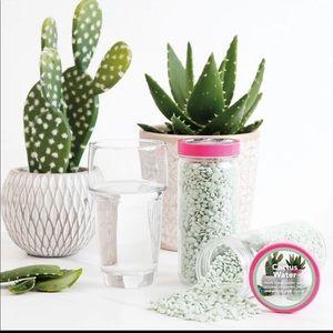 Pink Zebra Sprinkles Cactus Water 🌵💦